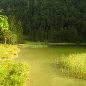 Ferienwohnungen Haus Karwendelblick Mittenwald Ferienwohnung Wiesengrün