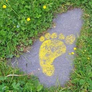 Ferienwohnungen Haus Karwendelblick Mittenwald Aktuelles und Tipps